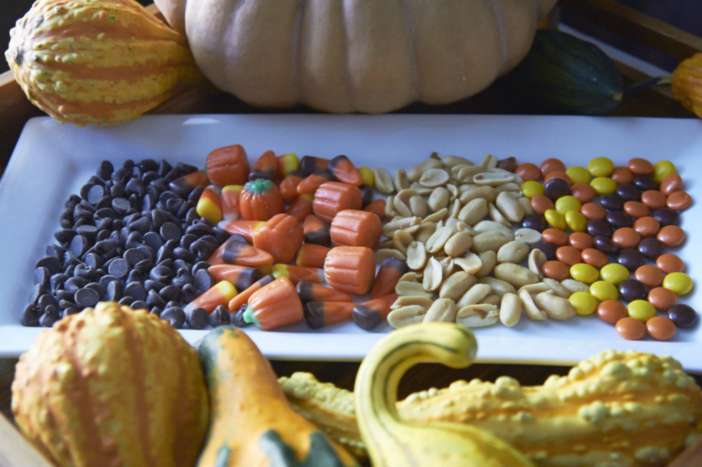 A plate filled with rows of chocolate chips, candy corn, peanuts and peanut butter candies surrounded by pumpkins and gourds.