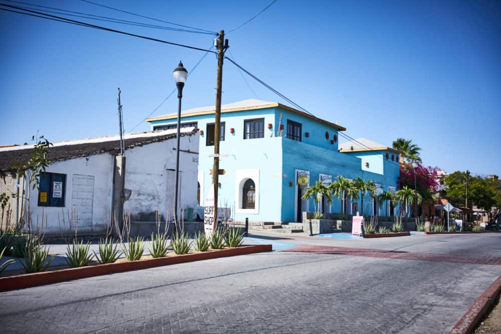 A white building and a blue building on a street in Todos Santos, Mexico, on a street lined with agave and palm trees.