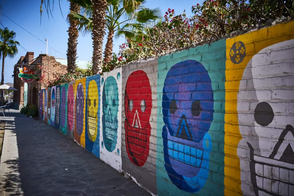 A brick wall is painted with a row of multi-colored skulls with palm trees in the background in Todos Santos, Mexico.