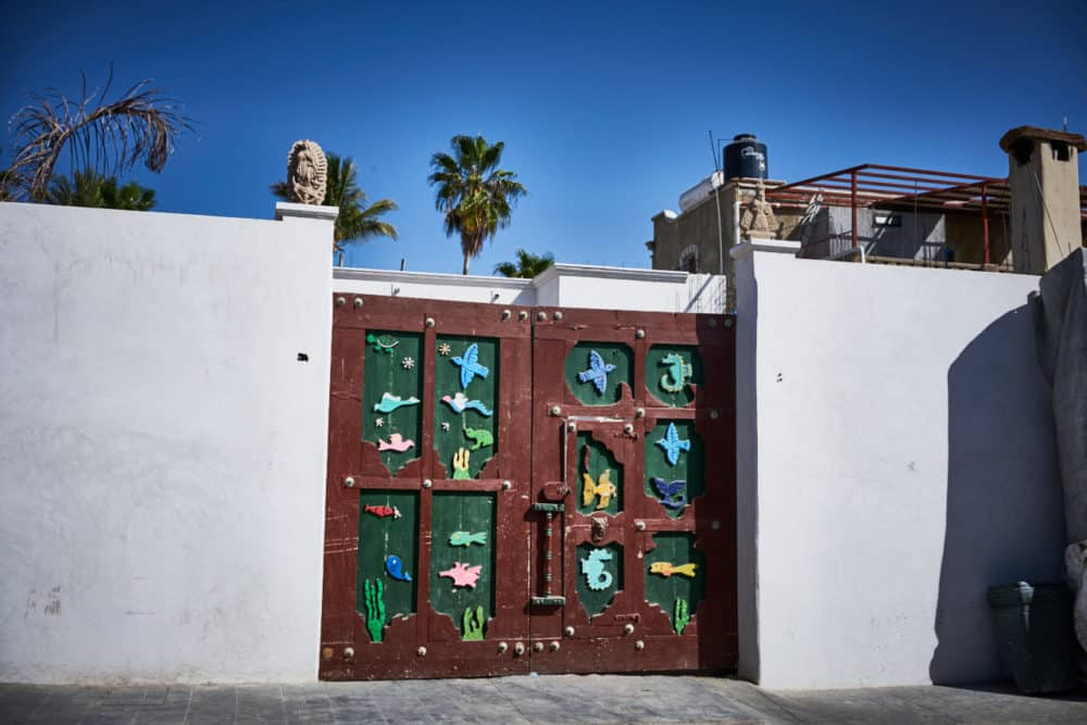 A large white wall with a wooden gate that has brightly colored birds, fish and other sea creatures.