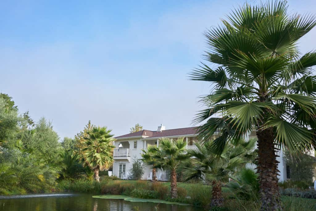 The View Rooms at Indian Springs hotel in Calistoga CA, a white building facing a pond surrounded by palm trees.