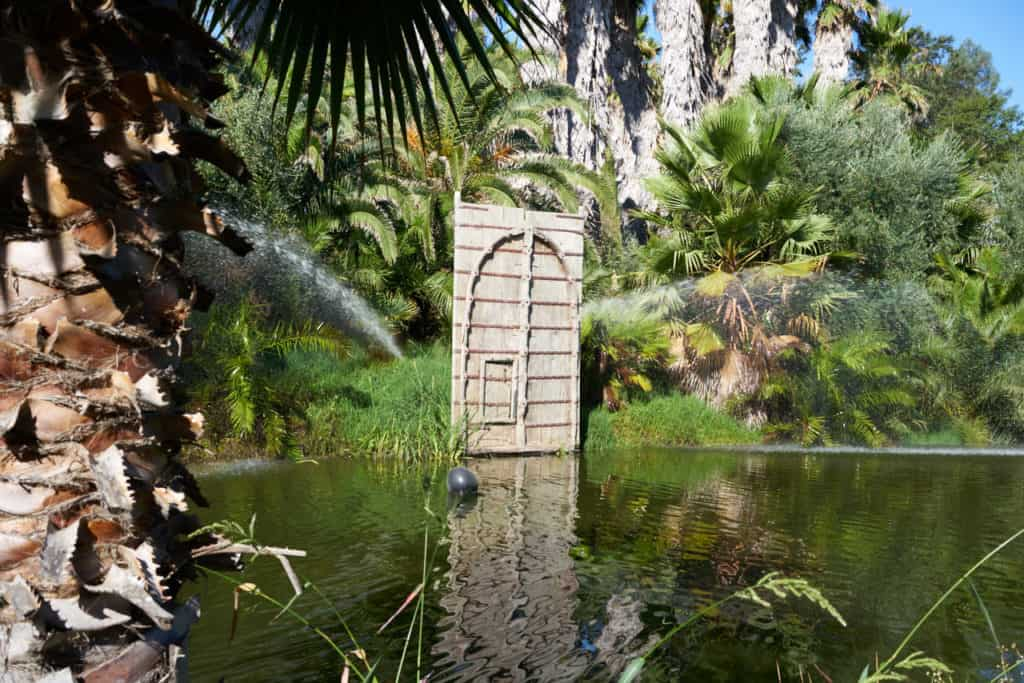 A water feature surrounded by palm trees on the grounds of Indian Springs.