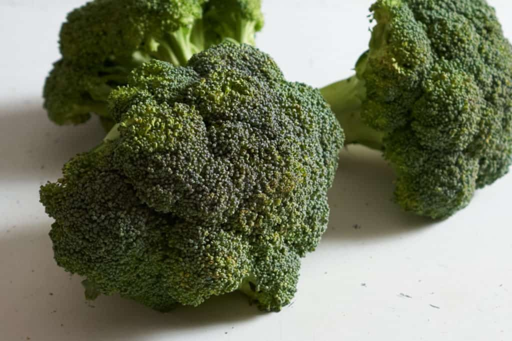 Three fresh broccoli crowns.